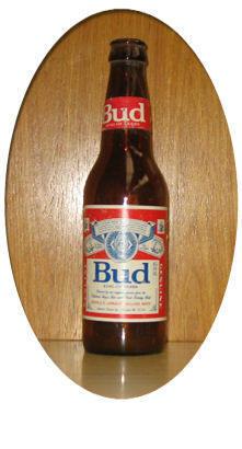 Botella de Cerveza 22